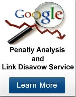 Google penalty analysis service
